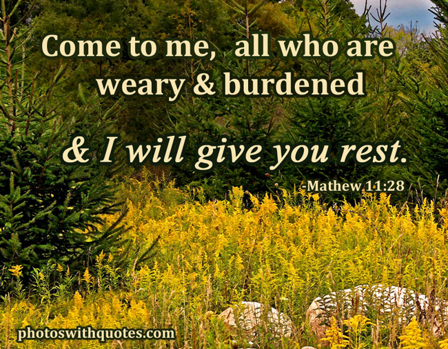 Inspirational Bible Verses on Pictures and Images to Inspire